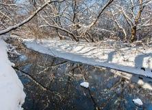Fiume ed alberi di inverno nella stagione Immagine Stock Libera da Diritti
