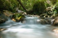Fiume a flusso rapido della montagna nelle alpi europee Immagini Stock Libere da Diritti