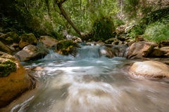 Fiume a flusso rapido della montagna nelle alpi europee Fotografia Stock