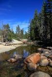 Fiume in foreste in parco nazionale di Yosemite negli Stati Uniti Immagine Stock