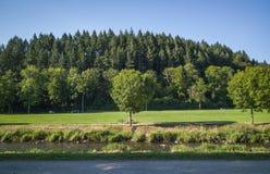 Fiume in Germania e la piccola foresta in Germania Fotografia Stock