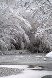 Fiume ghiacciato di inverno Fotografia Stock Libera da Diritti