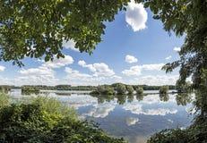 Fiume il Reno vicino a Walluf con la riflessione delle nuvole immagini stock libere da diritti