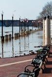 Fiume in inondazione. Fotografia Stock Libera da Diritti