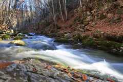 fiume Interamente scorrente Fotografie Stock