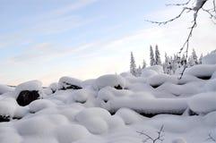 Fiume in inverno Immagine Stock