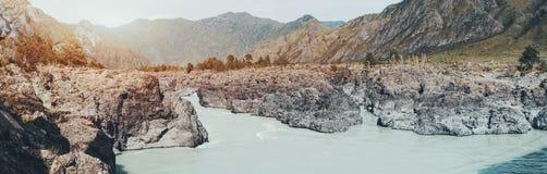 Fiume Katun dell'Altai circondato dalle montagne Fotografia Stock Libera da Diritti