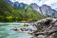 Fiume Katun, Russia, Siberia, montagne di Altai, ri della montagna di Katun Fotografia Stock