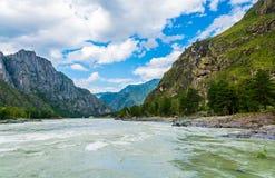 Fiume Katun, Russia, Siberia, montagne di Altai, ri della montagna di Katun Fotografie Stock Libere da Diritti