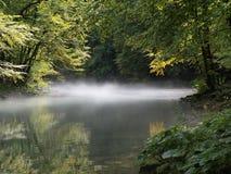 fiume Kupa Fotografia Stock