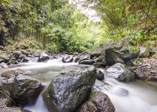 Fiume in Maui Fotografie Stock