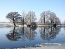 Fiume Minija ed alberi piacevoli nell'inverno, Lituania Fotografia Stock