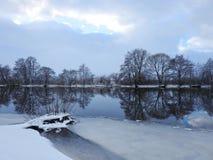 Fiume Minija ed alberi piacevoli nell'inverno, Lituania Immagini Stock