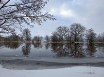 Fiume Minija ed alberi piacevoli nell'inverno, Lituania Immagine Stock Libera da Diritti