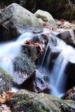 Fiume molle della cascata con le rocce in foresta nell'esposizione lunga Fotografia Stock