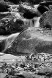 Fiume molle della cascata con le rocce in foresta nell'esposizione lunga Fotografia Stock Libera da Diritti
