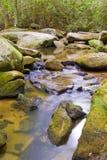 Fiume in montagne appalachiane Fotografia Stock
