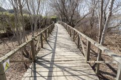 Fiume naturale di Llobregat di delta di area, vicino al EL Prat-Barc dell'aeroporto Fotografie Stock Libere da Diritti