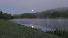 Fiume nebbioso di mattina di estate con gli uccelli che cantano, usignolo, canto degli uccelli della molla del canto degli uccell stock footage
