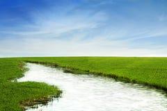 Fiume nel campo di erba Immagini Stock Libere da Diritti
