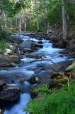 Fiume nel parco nazionale di acadia fotografia stock libera da diritti
