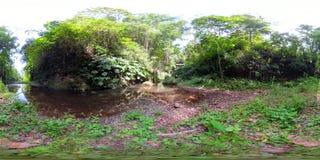 Fiume nella giungla in Asia vr360 video d archivio