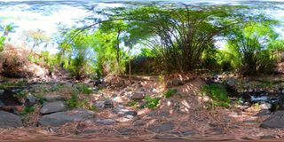 Fiume nella giungla in Asia vr360 stock footage