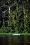 Fiume nella giungla, Tortuguero, Costa Rica Fotografie Stock Libere da Diritti