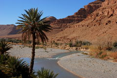 Fiume nella gola Marocco del canyon fotografie stock libere da diritti