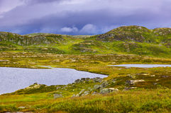 Fiume nella regione di Buskerud di Norvegia Fotografia Stock Libera da Diritti