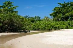 Fiume nella spiaggia Fotografie Stock Libere da Diritti