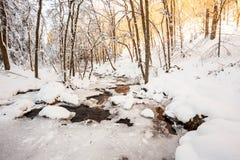 Fiume nella valle Fotografie Stock