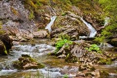 Fiume nelle montagne Fotografie Stock