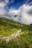 Fiume nelle montagne Immagine Stock
