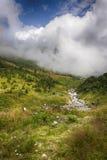 Fiume nelle montagne Fotografia Stock