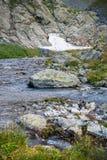 Fiume nelle montagne di Altai Fotografie Stock