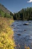 Fiume nelle montagne di Altai Immagine Stock Libera da Diritti