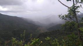 Fiume nero Gorge& x28; Mauritius& x29; Immagine Stock Libera da Diritti