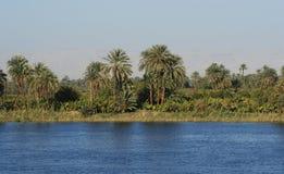 Fiume Nilo Immagini Stock