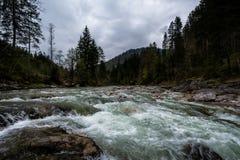 Fiume precipitante sopra le rocce in foresta con le montagne in Tirolo, Austria Fotografie Stock