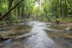 Fiume in profondità nella foresta pluviale della montagna Fotografia Stock Libera da Diritti