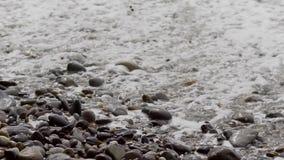 Fiume pulito con le onde e la schiuma archivi video