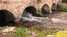 Fiume pulito del mulino a acqua stock footage