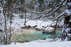 Fiume puro del turchese scenico di inverno di Snowy che entra nelle alpi julian delle montagne, Slovenia Fotografia Stock Libera da Diritti