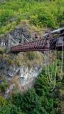 Fiume Queenstown di Kawerau del canyon dei capitani Immagine Stock Libera da Diritti