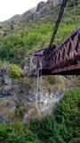Fiume Queenstown di Kawerau del canyon dei capitani Fotografia Stock