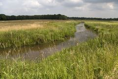 Fiume Reest in Avereest Immagine Stock