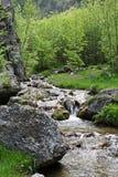 Fiume, rocce e molla in montagne di Cerna, Romania Immagine Stock