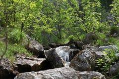 Fiume, rocce e molla in montagne di Cerna, Romania Immagini Stock Libere da Diritti