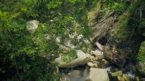Fiume roccioso che entra sulle pietre nel paesaggio aereo della foresta tropicale verde Corrente del fiume della montagna nella v video d archivio